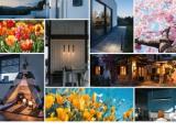 Cover_of_Catalogs.cover_slv_spring_2019nsp-920 Artemis Light - Αρχική